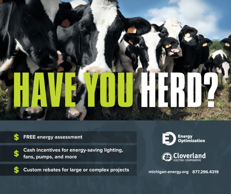 "Graphic with a photo of Holstein cows stating, ""have you heard of energy savings?"" Promoting Energy Optimization's services."