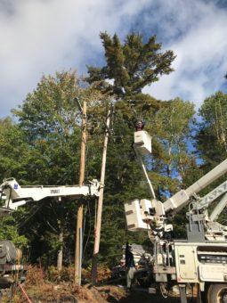 linemen in box trucks working on power poles near trees